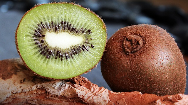 can dog eat Kiwi?